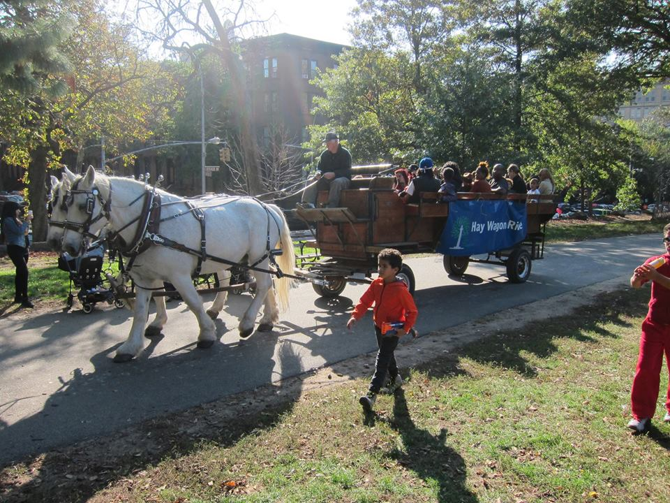 Halloween-at-Fort-Green-Park-Hay-Ride